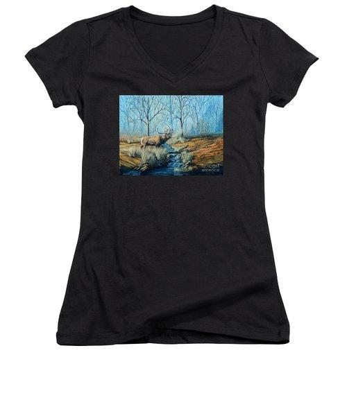 Misty Morning Bugler Women's V-Neck T-Shirt (Junior Cut) by Ruanna Sion Shadd a'Dann'l Yoder