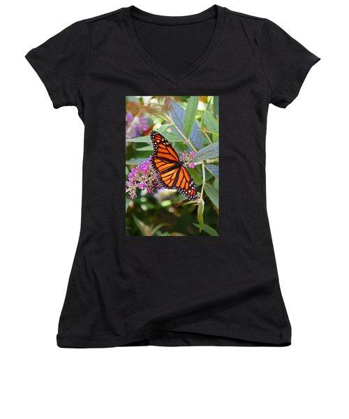 Monarch Butterfly 2 Women's V-Neck T-Shirt (Junior Cut) by Allen Beatty