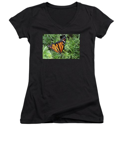 Monarch Butterfly In Lush Leaves Women's V-Neck (Athletic Fit)