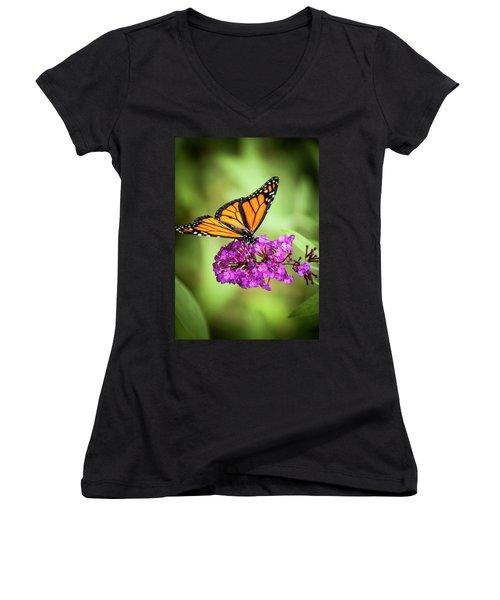 Monarch Moth On Buddleias Women's V-Neck