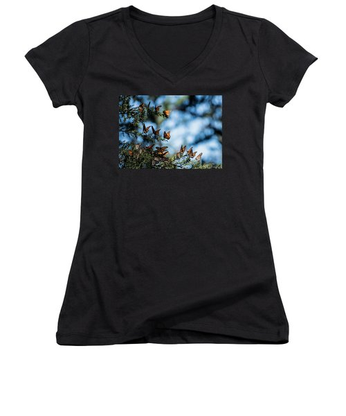 Monarchs In The Tree Women's V-Neck (Athletic Fit)