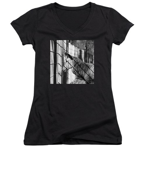 #monochrome #canon #cage #blackandwhite Women's V-Neck