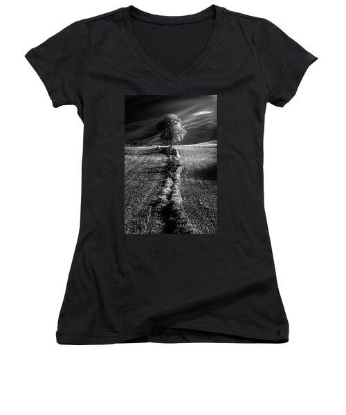 Monochrome Valley Women's V-Neck T-Shirt