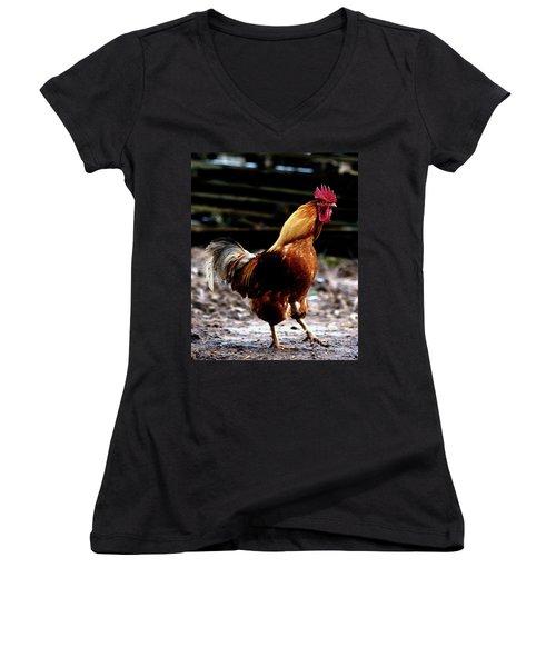 Monsieur Coq  Women's V-Neck