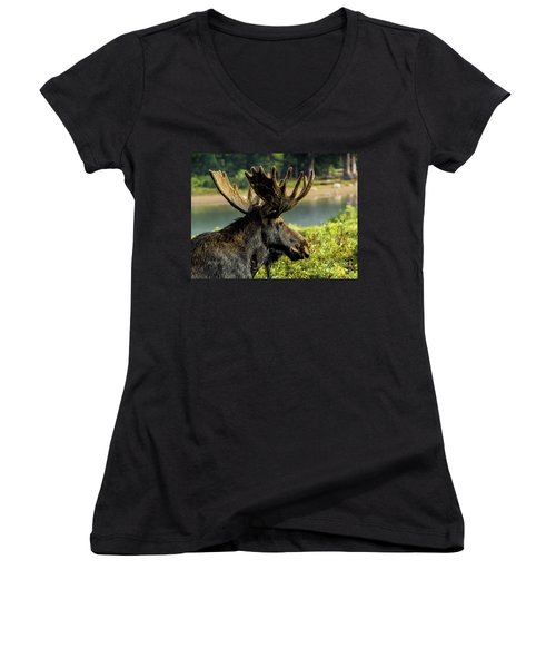 Moose Adventure Women's V-Neck T-Shirt