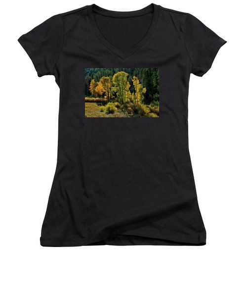 Women's V-Neck featuring the photograph Morning Cottonwoods by Ron Cline
