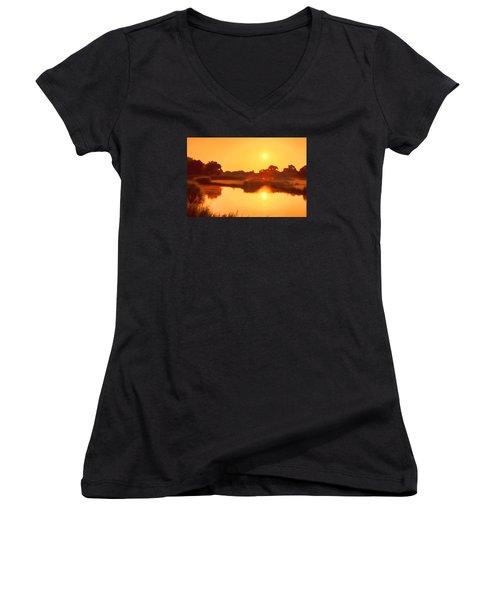 Morning Glory Women's V-Neck T-Shirt (Junior Cut) by Nadia Sanowar