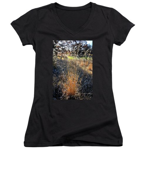 Morning Sun Backlights Fall Grasses In Glacial Park Women's V-Neck