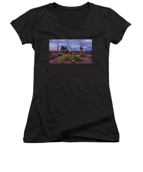 Morning Walk Along Peralta Trail Women's V-Neck T-Shirt (Junior Cut) by Monte Stevens