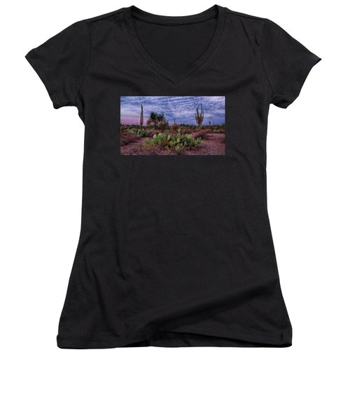 Morning Walk Along Peralta Trail Women's V-Neck T-Shirt