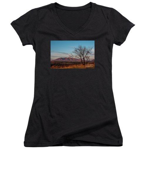 Mount Ara At Sunset With Dead Tree In Front, Armenia Women's V-Neck T-Shirt (Junior Cut) by Gurgen Bakhshetsyan