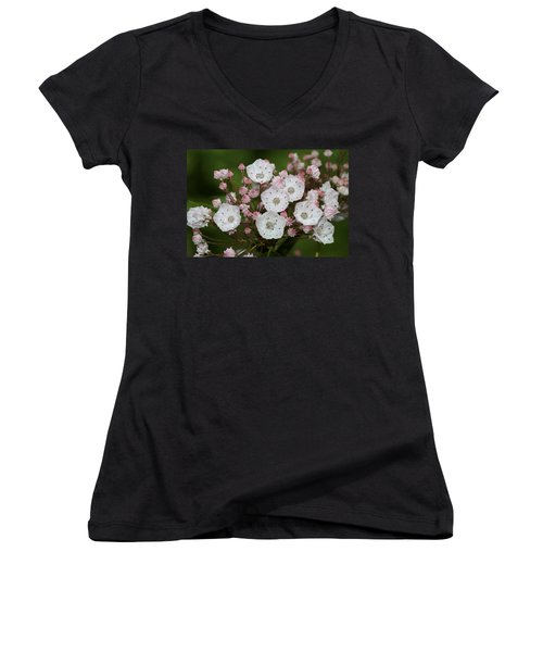 Mountain Laurel I Women's V-Neck T-Shirt
