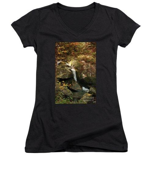 Mountain Stream Women's V-Neck T-Shirt (Junior Cut) by Rebecca Davis