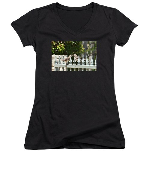 Mr And Mrs Mockingbird With Worms Women's V-Neck T-Shirt