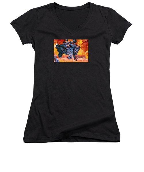 Multicolored Grapes Women's V-Neck T-Shirt (Junior Cut) by Lynn Hopwood