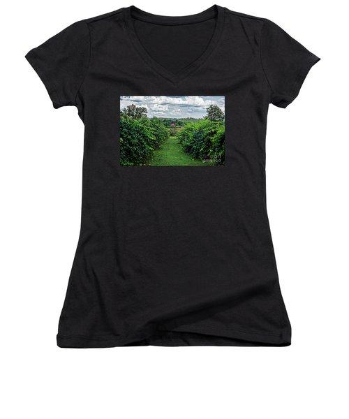Muscadine View Women's V-Neck T-Shirt (Junior Cut)