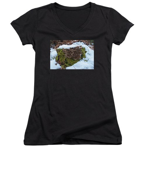 Mushrooms And Moss Women's V-Neck T-Shirt (Junior Cut) by Michael Peychich
