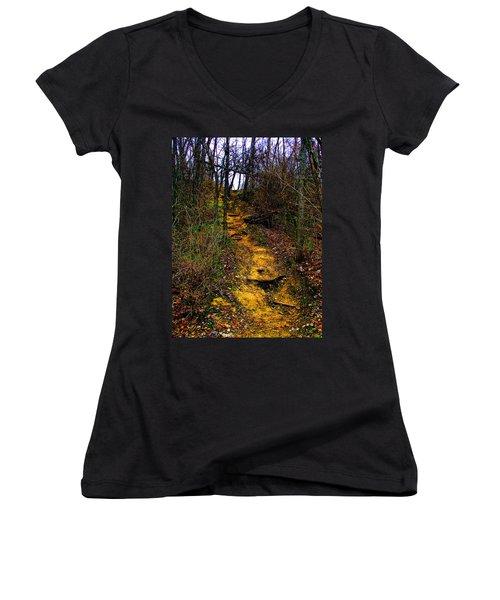 Mustard Hill Women's V-Neck T-Shirt