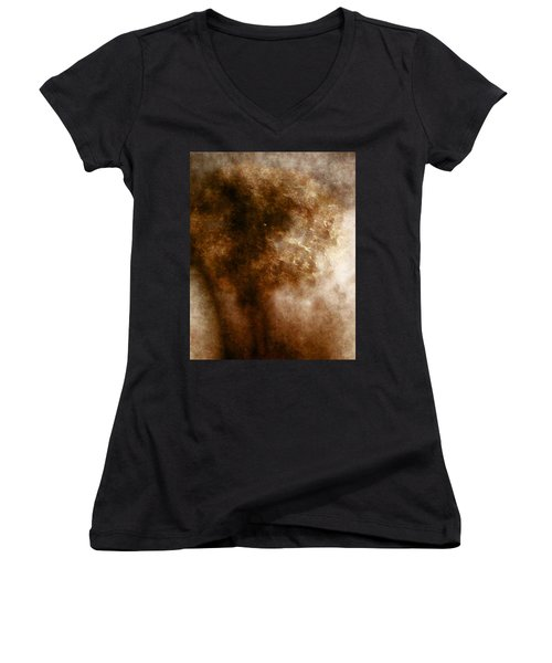 Mysterious Women's V-Neck T-Shirt (Junior Cut) by James Barnes