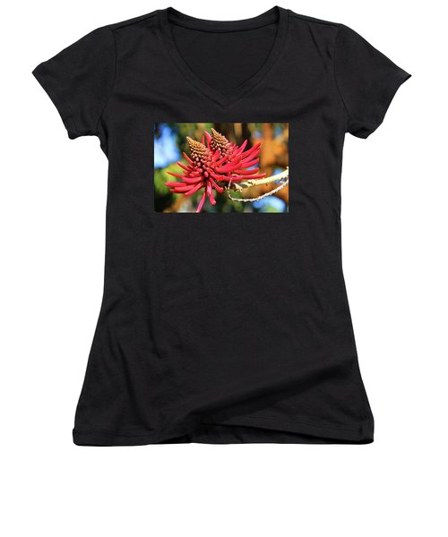 Naked Coral Tree Flower Women's V-Neck T-Shirt