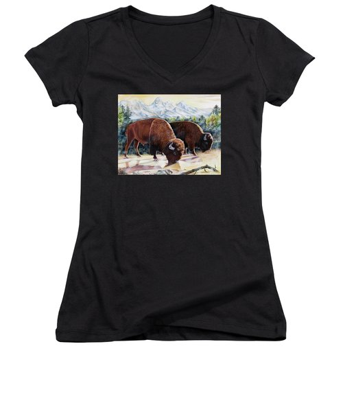 Native Nobility Women's V-Neck (Athletic Fit)