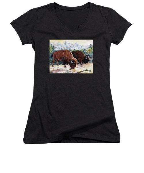 Native Nobility Women's V-Neck T-Shirt
