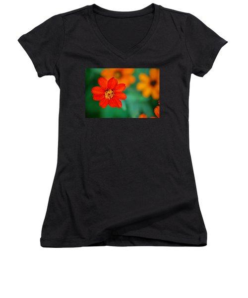 Women's V-Neck T-Shirt (Junior Cut) featuring the photograph Nature's Glow by Debbie Karnes