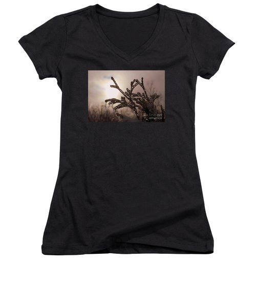 Natures  Ice Sculpture Women's V-Neck (Athletic Fit)