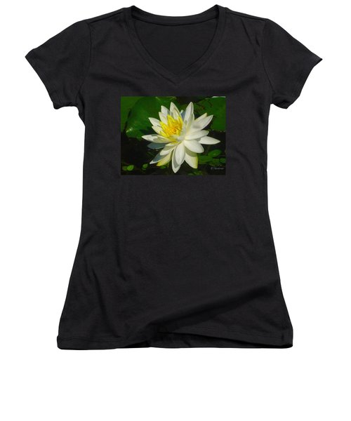 Natures Perfection  Women's V-Neck