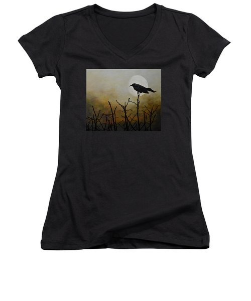 Never Too Late To Fly Women's V-Neck T-Shirt