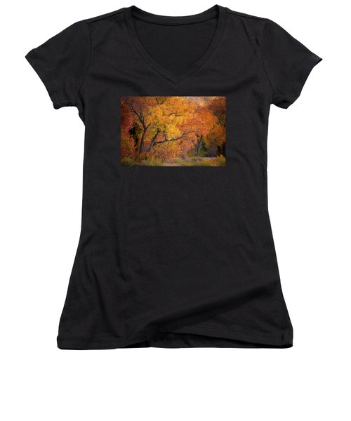New Mexico Gold Women's V-Neck