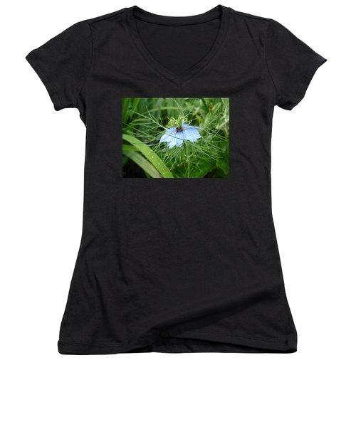 Nigella In Spring Rain Women's V-Neck T-Shirt