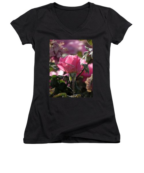 Women's V-Neck T-Shirt (Junior Cut) featuring the photograph Not Perfect But Special by Laurel Powell
