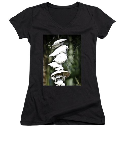 Women's V-Neck T-Shirt (Junior Cut) featuring the photograph Ocean Shells Composition by Yurix Sardinelly