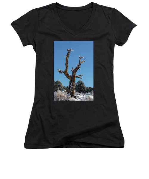 Old Tree - 9167 Women's V-Neck T-Shirt