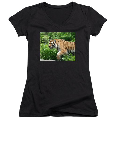 Women's V-Neck T-Shirt (Junior Cut) featuring the photograph On The Prowl by Richard Bryce and Family