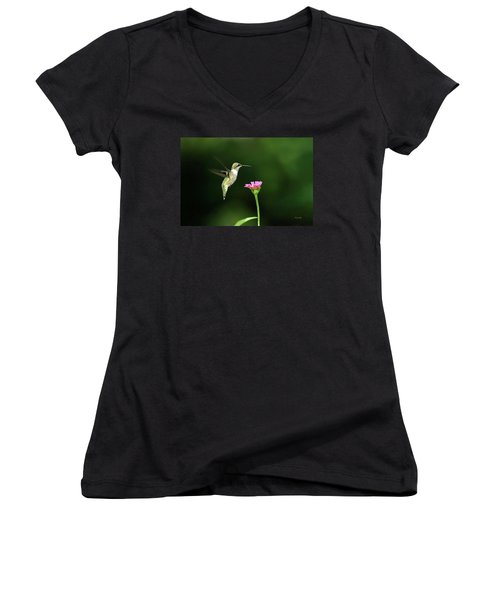 One Hummingbird Women's V-Neck T-Shirt