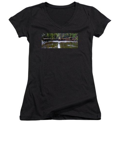Women's V-Neck T-Shirt (Junior Cut) featuring the photograph Oneonta Pano by Jonathan Davison