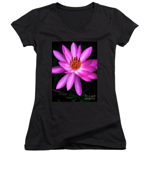 Opening - Early Morning Bloom Women's V-Neck T-Shirt (Junior Cut)