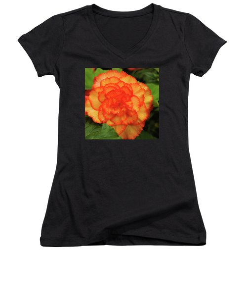 Orange Begonia Women's V-Neck T-Shirt (Junior Cut) by Haleh Mahbod