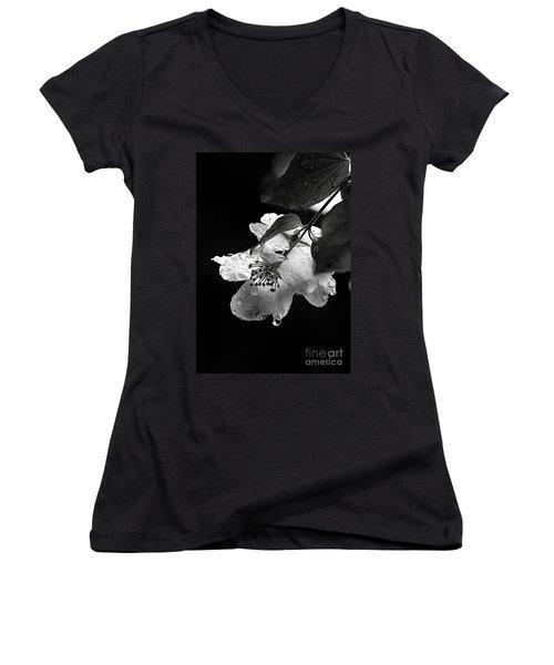 Orange Blossom Women's V-Neck T-Shirt (Junior Cut) by Elaine Hunter