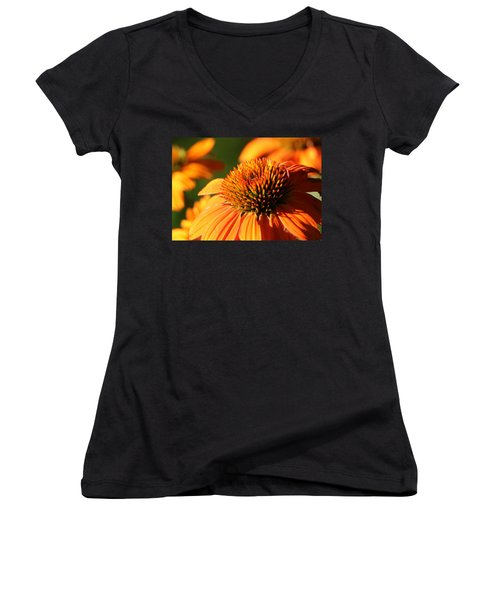 Orange Coneflower At First Light Women's V-Neck
