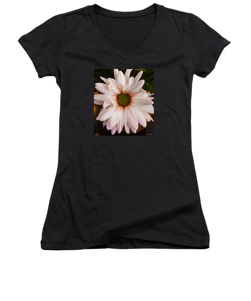 Orange Pastel Daisy Women's V-Neck