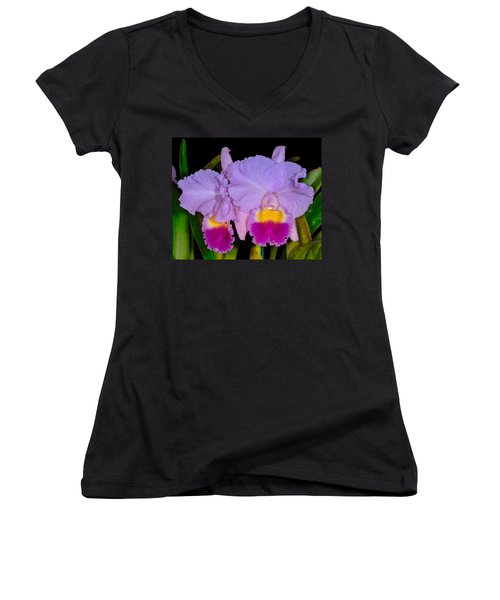 Orchid 428 Women's V-Neck (Athletic Fit)