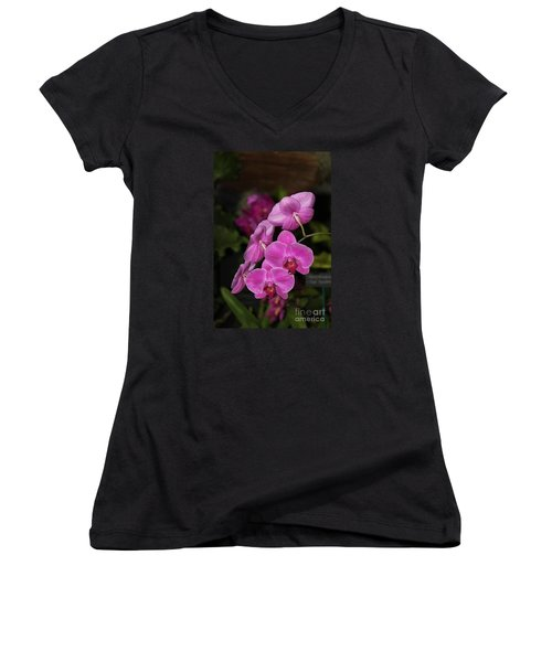 Orchids Alicia Women's V-Neck T-Shirt (Junior Cut) by The Art of Alice Terrill