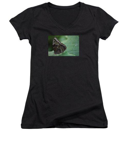 Owl Butterfly Women's V-Neck T-Shirt (Junior Cut) by Linda Geiger