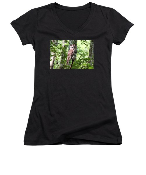 Owl In The Forest Women's V-Neck T-Shirt (Junior Cut) by Peggy Collins