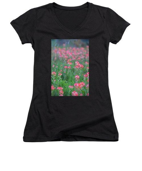 Paint Brushes For Texas Women's V-Neck T-Shirt