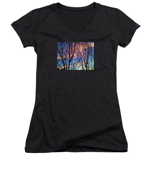 Paintbrush IIi Women's V-Neck T-Shirt