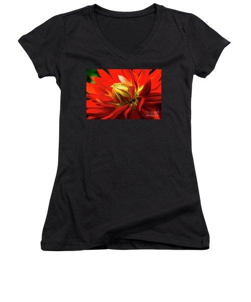 Painted Dahlia In Full Bloom Women's V-Neck T-Shirt